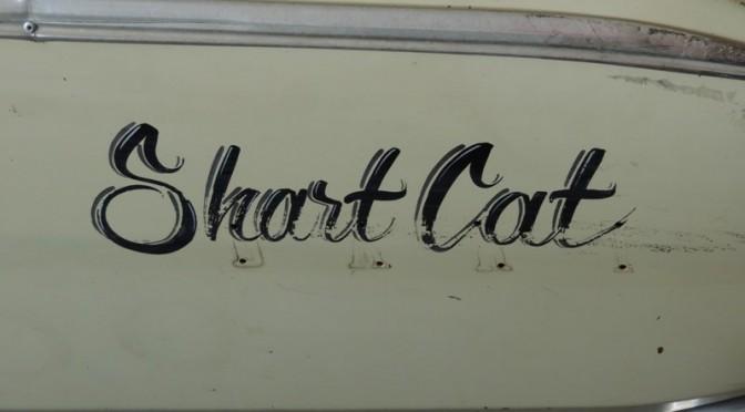 Shart Cat 67 Dart by Gas Monkey Garage