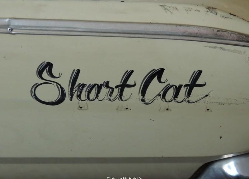 Shart-Cat-logo