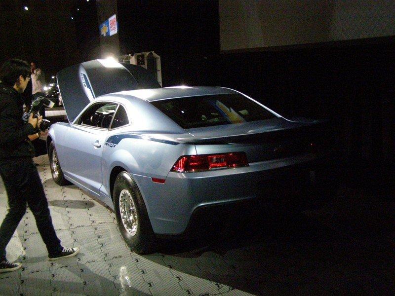 copo-2014-rear-end