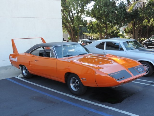 Escondido Super Bird
