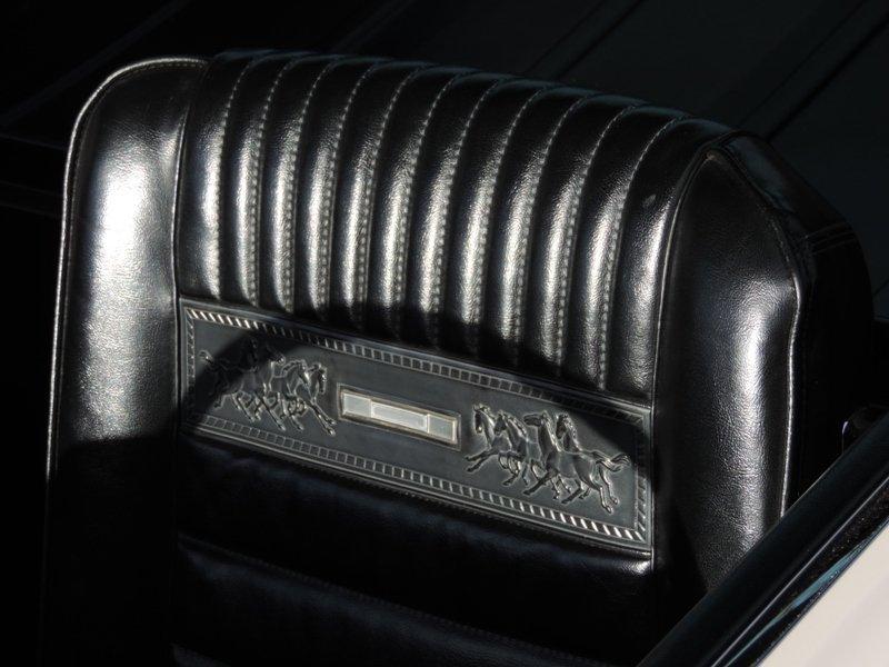 GT350 pony interior